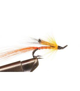 Ally´ Shrimp Koko 8 2H