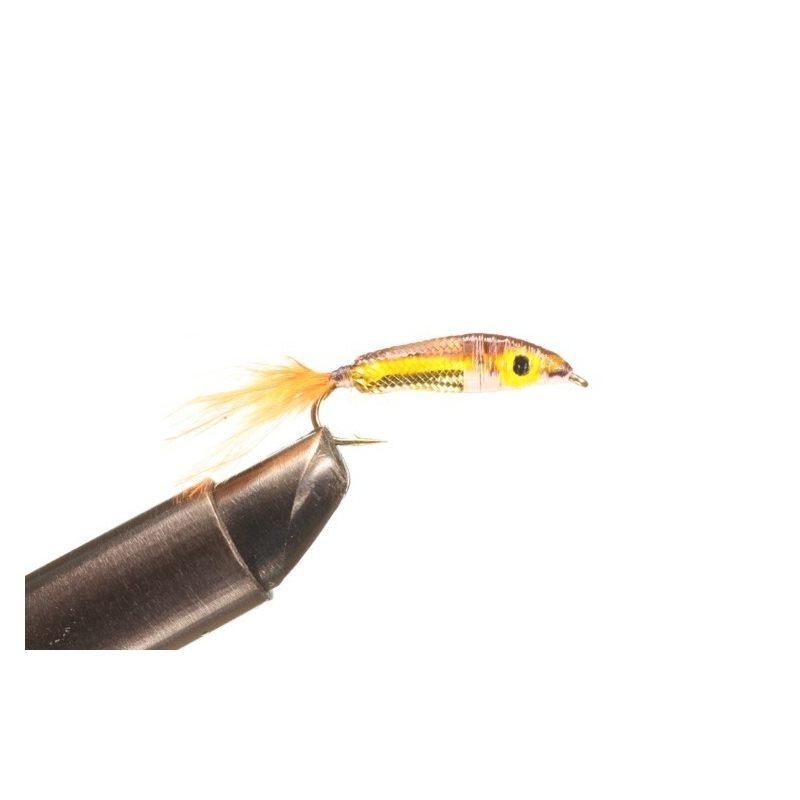Epoxy minnow brown orange tail Koko 8