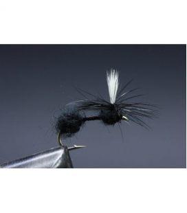 Parachute Ant Koko 12
