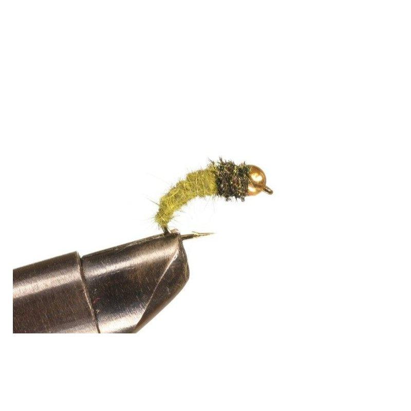 BH Larva Olive Koko 10