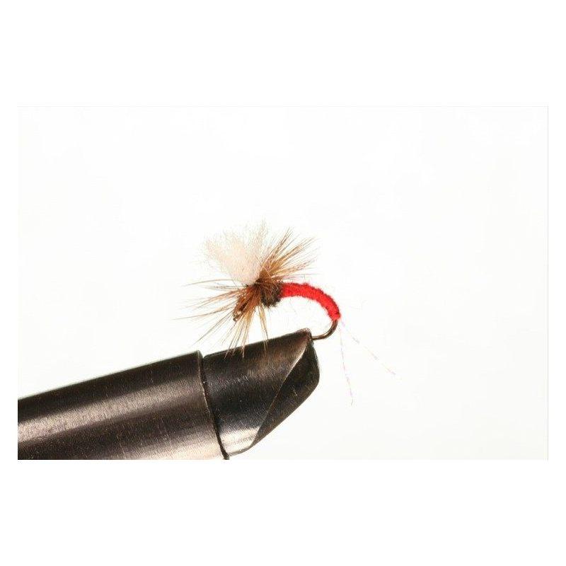 Klinkhamer Red Koko 12