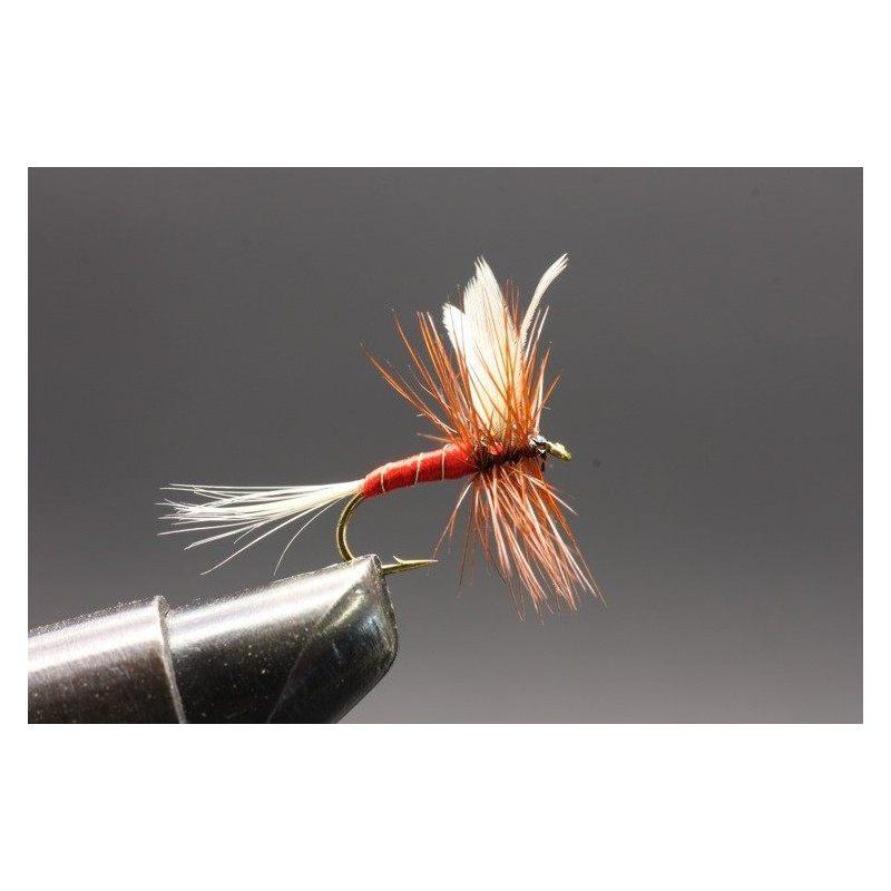 Red Spinner Koko 12
