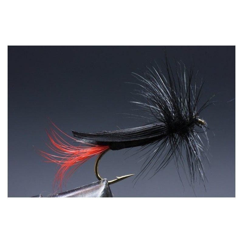 Foam Black Grass Hopper Koko 10