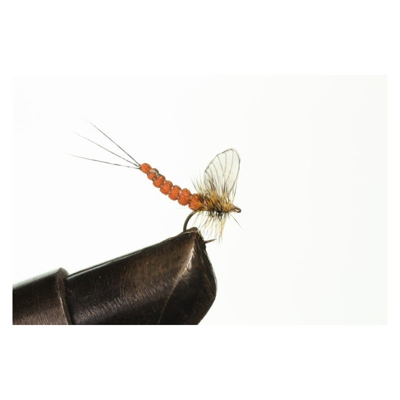 Mayfly Dun 5 Clear, H/T & A: Rust Red