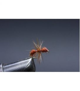 Brown Ant Size  18