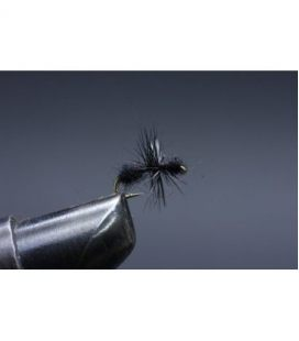 Black Ant Size  18