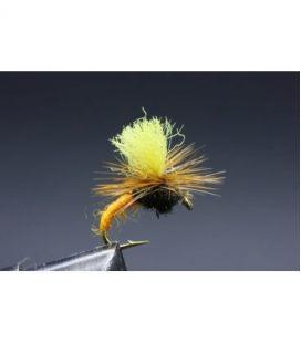 Klinkhamer Orange yellow...