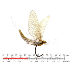 Mayfly Dun 1 Olive, H/T &...
